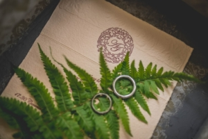 Wedding Invitation With A Fern