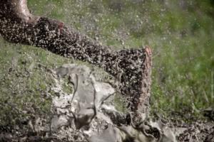 Mud Run Bachelor Party